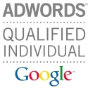 David Radicke ist AdWords Qualified Individual